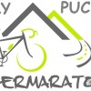 logo-mały puchar